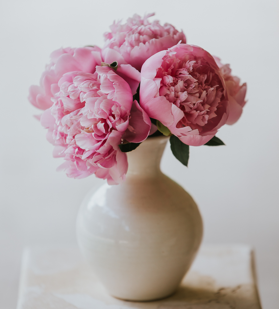 pink peonies, floral prints, flower photos, fresh flowers, nc photographer, nc blogger, xo Samantha Brooke, sam Brooke photo, Samantha Brooke, lifestyle blogger