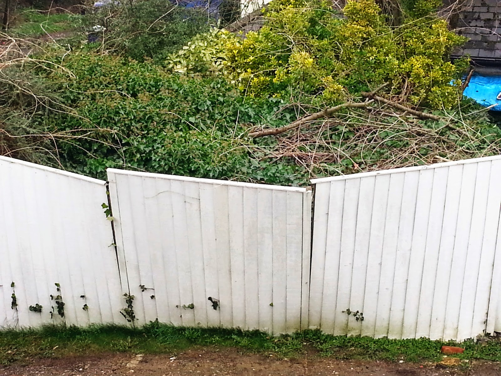 Travel The World Is A Dream London Property Fencing