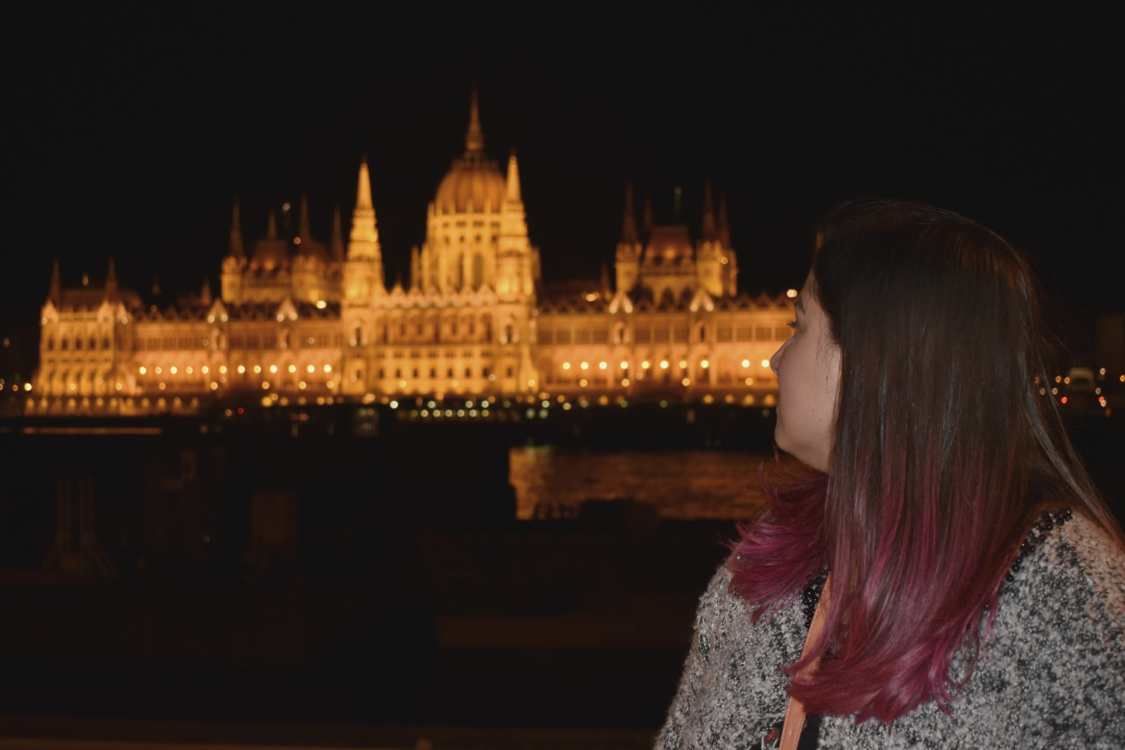 parlamento hungaro budapeste