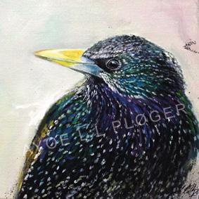 stær,sort sol, fugl, bird, sterling, kunst,moderne,maleri, ayoe l l pløger