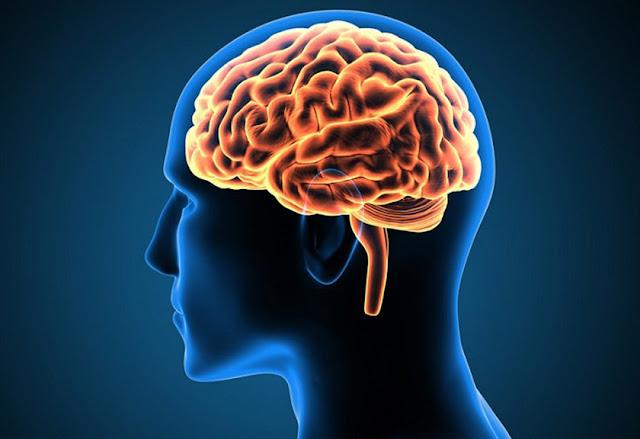 Hubungan Sinar Matahari dengan Kecerdasan Otak, Ternyata Ada Efek Menakjubkan!