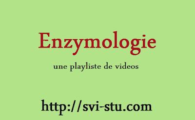 Enzymologie et Cinétique enzymatique en vidéos