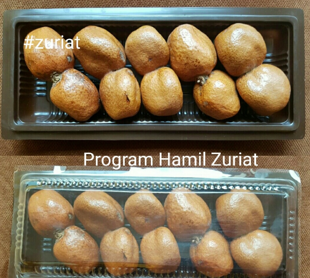 Supplier Buah Zuriat Asli di Changi Singapore
