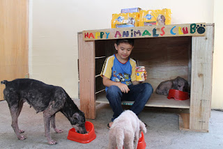 Ken has a passion for helping stray animals and builds them a shelter