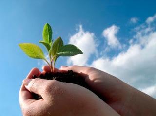 كتابة موضوع تعبير عن البيئة وكيفية الحفاظ عليها