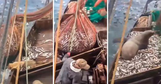 Bote pesquero ruso encuentra una enorme sorpresa