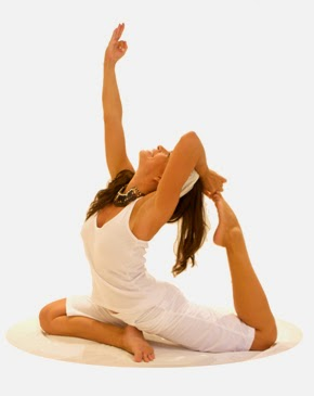 365 jours de yoga  12 dvd camp d'entrainement avec ana brett