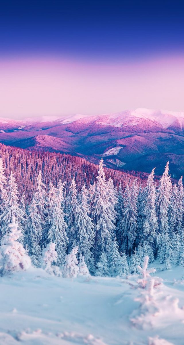 10 Best Winter Wallpapers For Iphone Xr To Spece Up Your