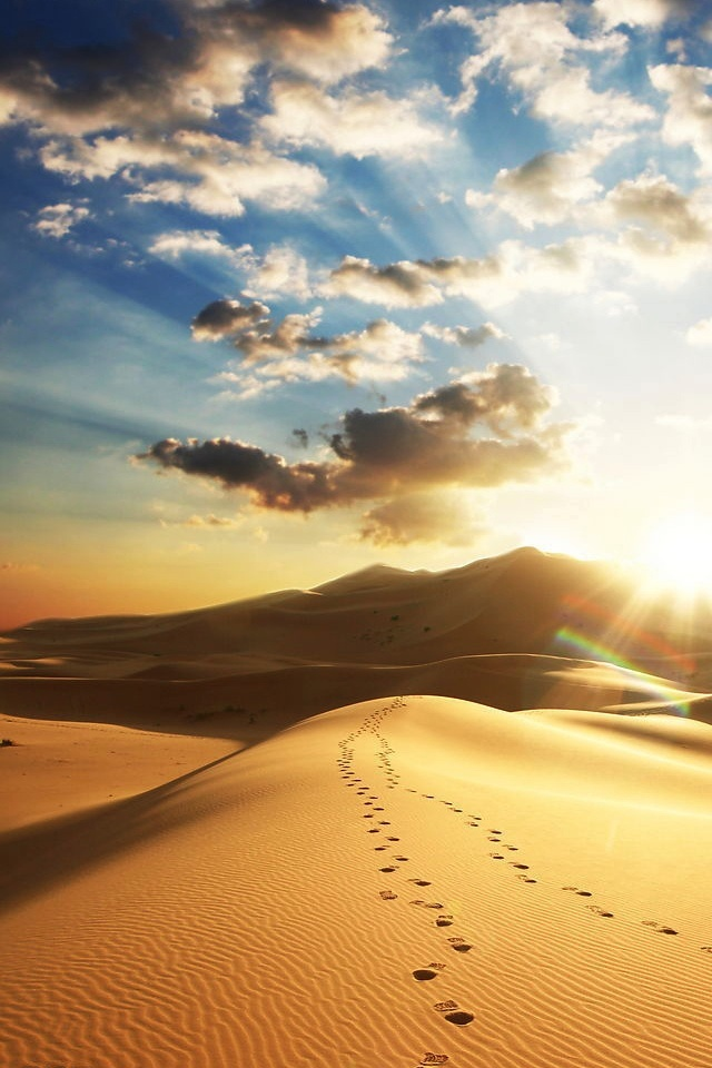 Free Iphone Wallpapers Hd: Desert Footprint Cool Iphone4