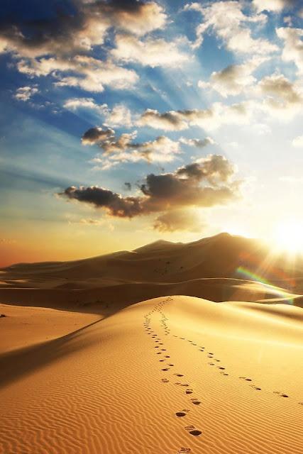 Free Iphone Wallpapers Hd Desert Footprint Cool Iphone4
