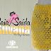 Videoaula   Saia /Saída de praia Silvana