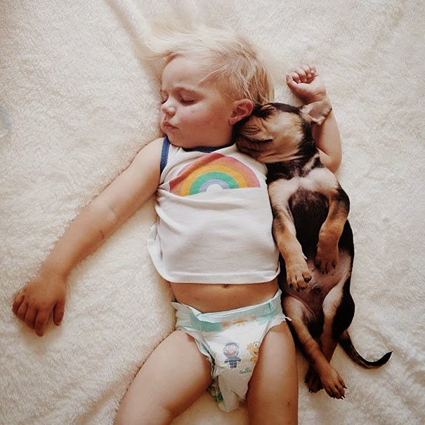 toddler  naps with puppy