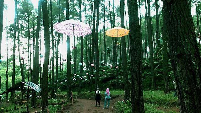 Taman Gua Sigrowong, Potensi Wisata alam, Sejarah dan Ekowisata di Temanggung