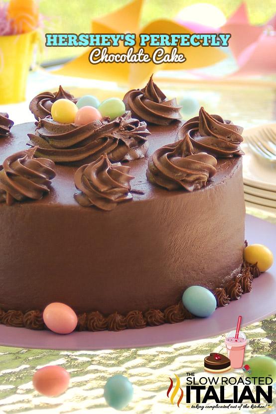 Best Ever Simple Chocolate Cake