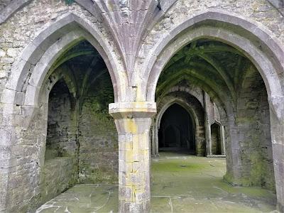 Kilcooley Abbey, Tipperary.