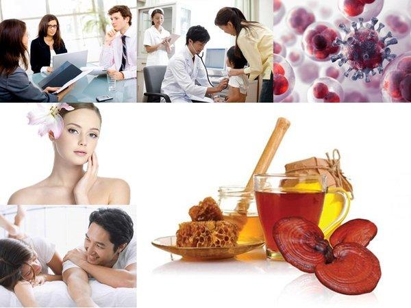 Dùng nấm linh chi nâng cao chất lượng sức khỏe