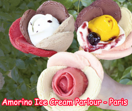 Amorino Ice Cream Parlor in Paris