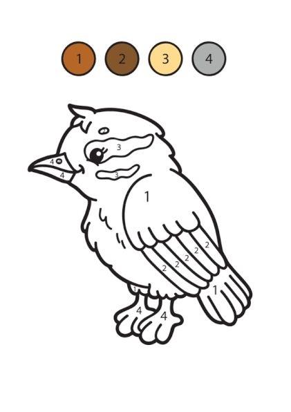 Hình tô màu con chim theo số