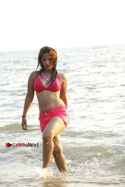 Sanga Kumar Shunaya Starring Box Telugu Movie Gallery  0001.jpg