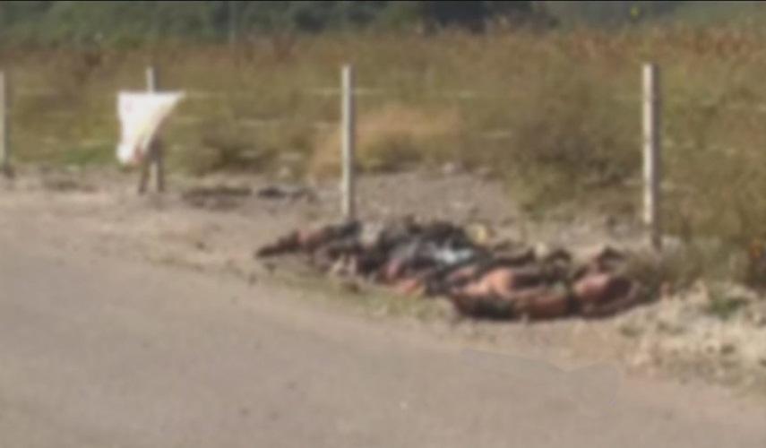 Hallan 5 cuerpos en carretera de Chihuahua