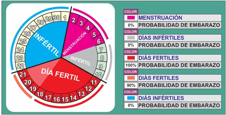 Dias Fertiles Calendario Mujer 15