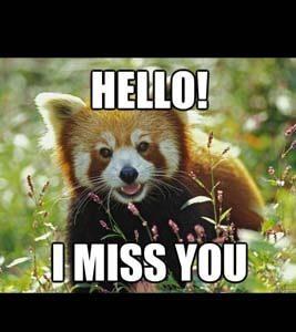 i miss you meme  32