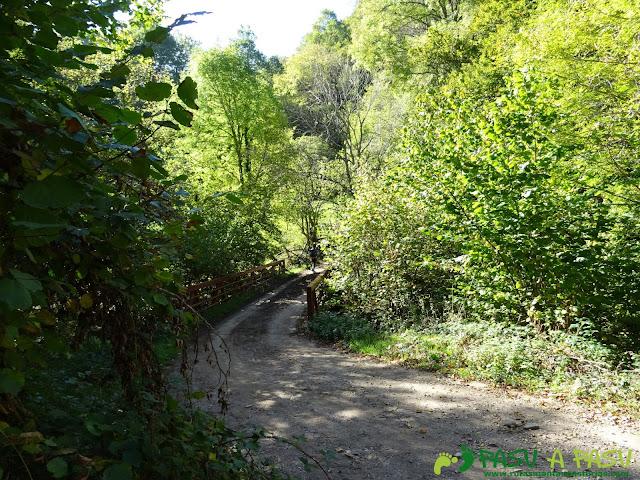 Ruta Vega Pociellu y Bosque Fabucao: Puente sobre el Nalón