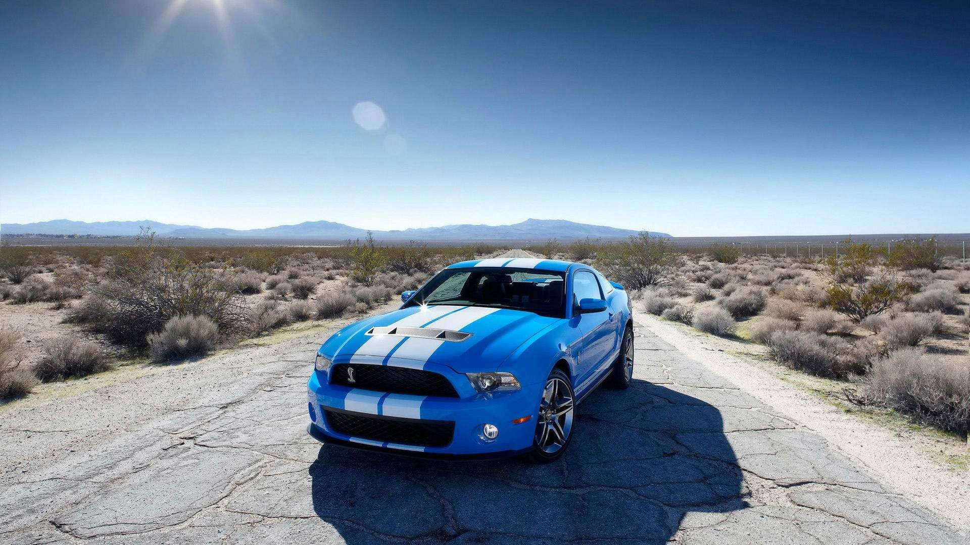Ford Cars HD Wallpapers - photo#12