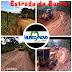 Melhoramento é realizado na estrada da Barra de Mundo Novo
