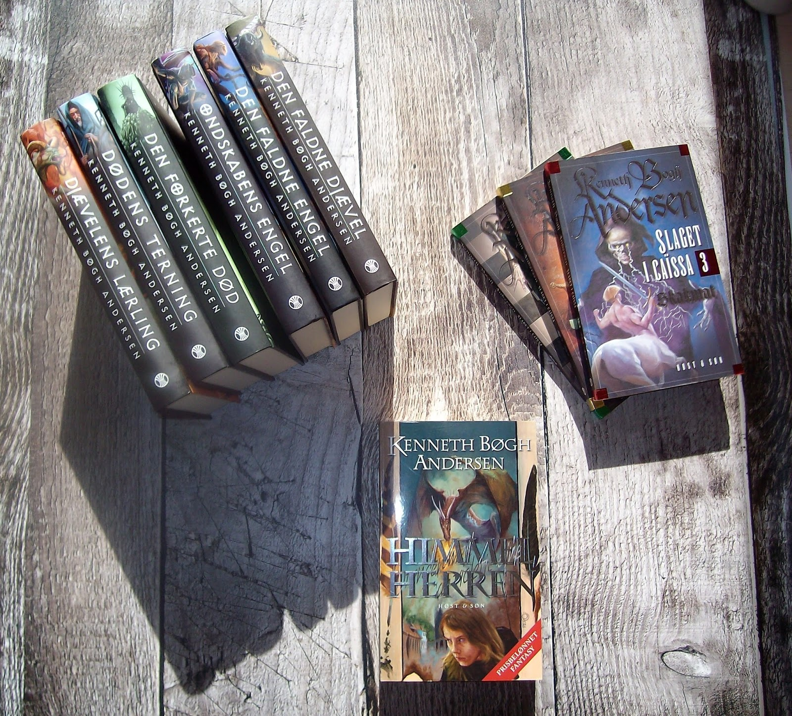 fantasy bøger voksne