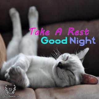 funny good night wish