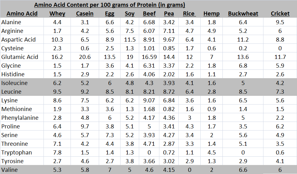 whey protein anabolic effect