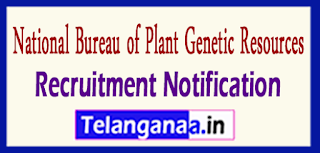 NBPGR National Bureau of Plant Genetic Resources Recruitment Notification 2017 Last Date 22-05-2017