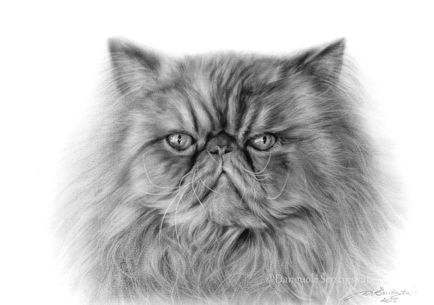 03-Certainty-Danguole-Serstinskaja-Paintings-of-Cats-that-look-like-Photographs