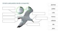 http://primerodecarlos.com/SEGUNDO_PRIMARIA/SANTILLANA/Libro_Media_Santillana_c_del_medio_segundo/data/ES/RECURSOS/actividades/04/05/010405.swf