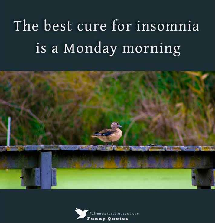 The best cure for insomnia is a Monday morning.