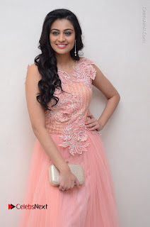 Actress Neha Hinge Stills in Pink Long Dress at Srivalli Teaser Launch  0026.JPG