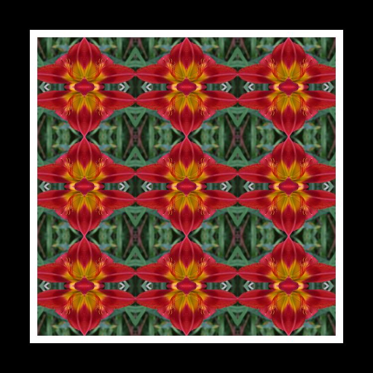 Pattern Gallery
