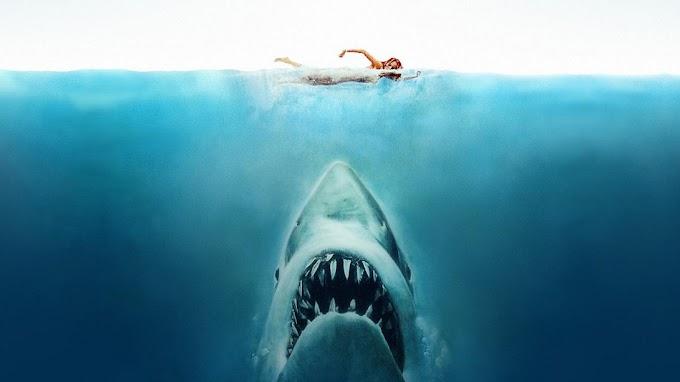La película Miedo Profundo se estrena en Ecuador