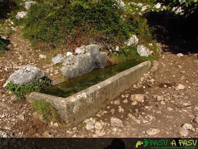 Fuente camino a Bulnes