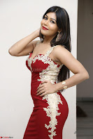 Rachana Smit in Red Deep neck Sleeveless Gown at Idem Deyyam music launch ~ Celebrities Exclusive Galleries 066.JPG