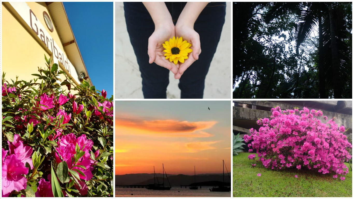 nathalia orige, nathalia orige blog, projeto 6 on 6, 6 on 6, fotografia, primavera, tchau inverno, mundo lizpector, foto