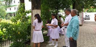 rakhi-celebrates-with-tree-begusaray