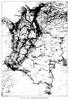 Mapa de colombia mostrando area con arboles de quina
