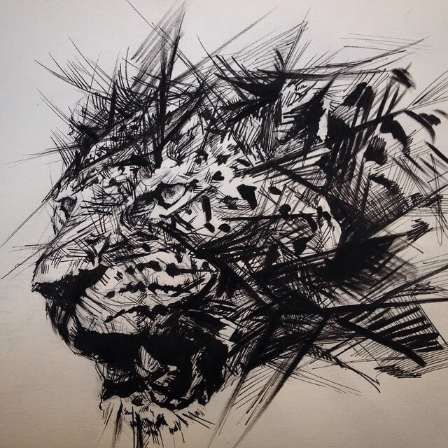 05-Leopard-Pen-Sketch-Matthew-McHugh-Animal-Drawings-and-Surreal-Interpretations-www-designstack-co