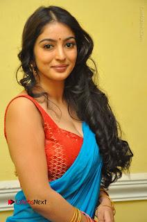 Telugu Actress Vaibhavi Stills in Blue Saree at Www.Meena Bazaar Movie Opening  0022.JPG
