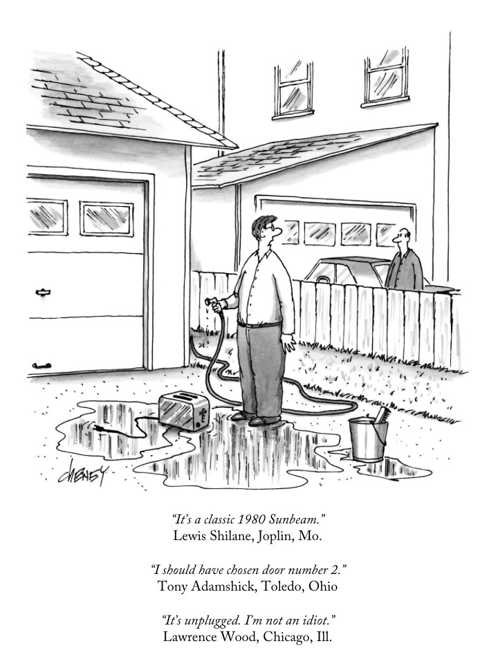 attempted bloggery  my entry in the new yorker cartoon