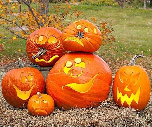 funny pumpkin carving patterns