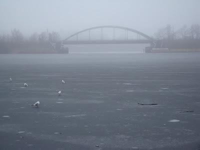 Lago congelado em Postdam