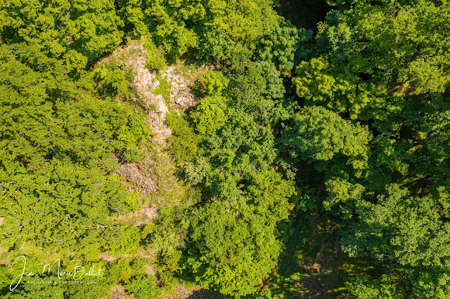 Hahneck — vue aérienne zénithale